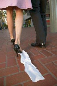 toilet-paper-shoe